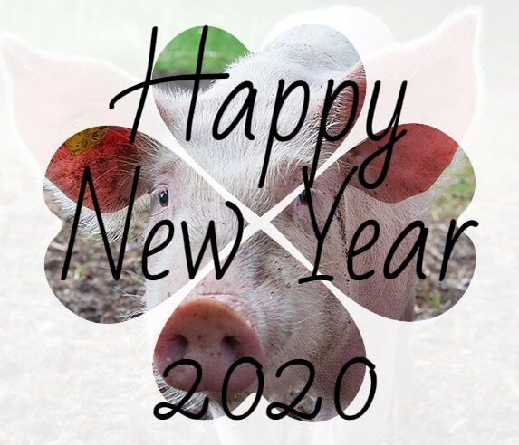 new_year_2020